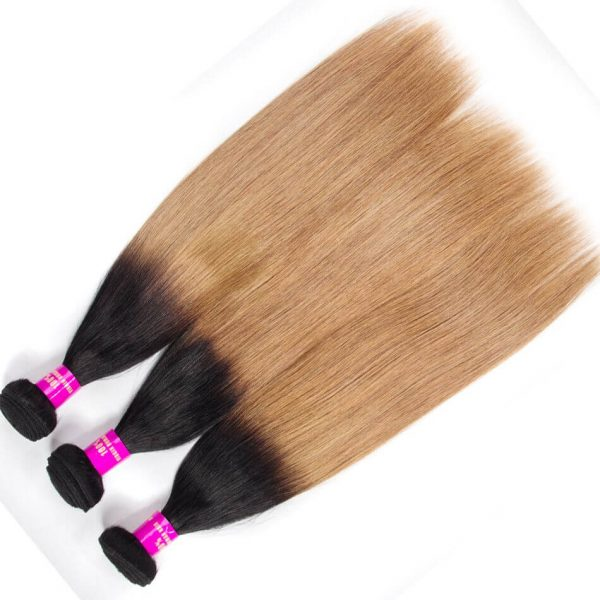Tinashe hair straight hair bundles ombre hair 1b 27