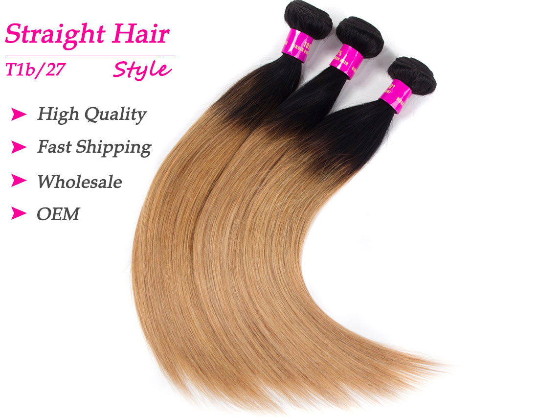 Tinashe hair 1b/27 ombre straight human hair bundles