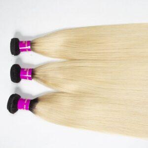 Tinashe hair ombre 1b 613 honey blonde straight hair bundles